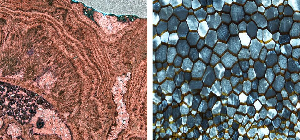 nikon metrology industrial microscopes smz25 18 key benefits